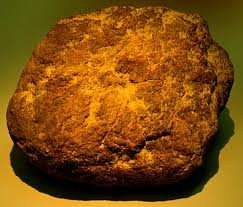 What is a fossil? here is an example of a Dinosaur Dung called Coprolite.